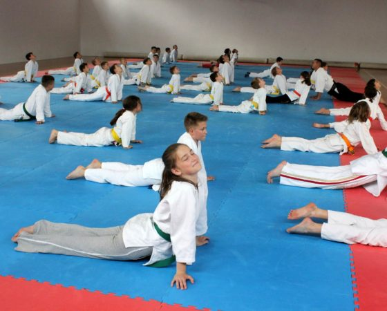 Letnia Akademia Aikido – Krasnobród 2015