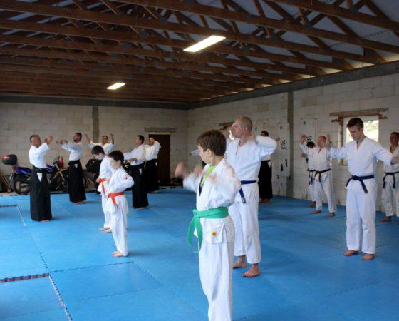 Młodzieżowa Akademia Aikido – Skowronkowe Wzgórze 2016