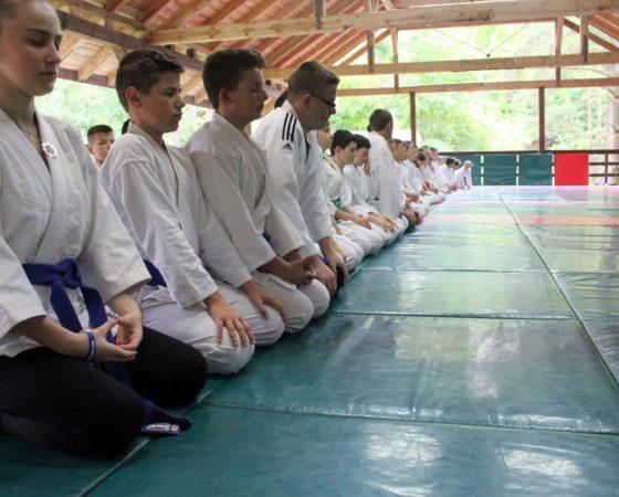 Letnia Akademia Aikido – Jakubowo 2017