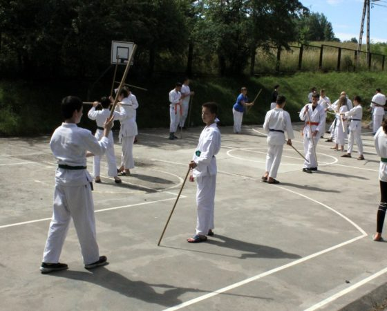Letnia Akademia Aikido – Jakubowo 2018